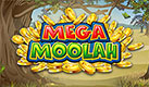 Play Mega Moolah on desktop