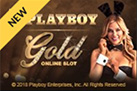 Play Playboy Gold on desktop
