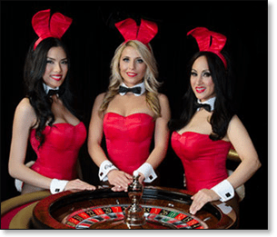 Playboy bunny live dealer