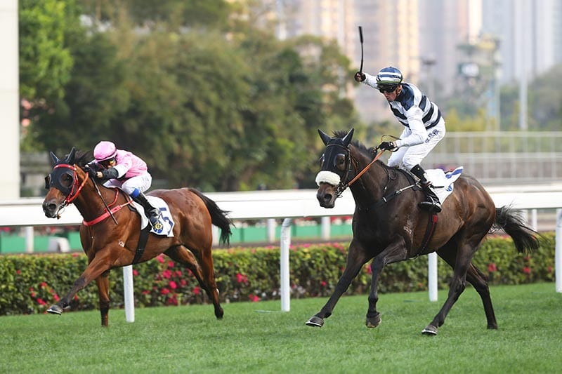 Harmony Hero wins at Sha Tin