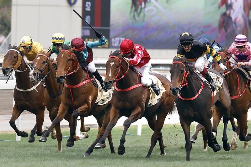 Mr Stunning Hong Kong betting