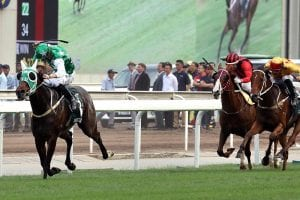 Pakistan Star wins QEII Cup