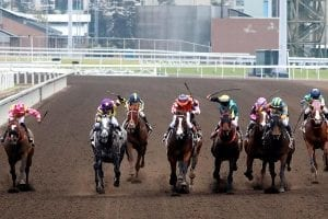 Vincent Ho wins four races at Sha Tin
